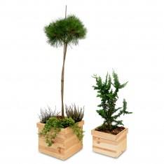 Doniczka kwadrat drewniana Natural wood 26x26x18 cm
